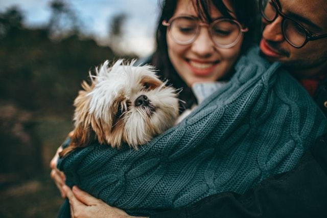 Att ha hundar som bästa vänner
