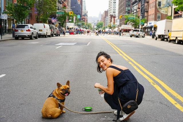 En hundvakt tar om din hund när inte du kan